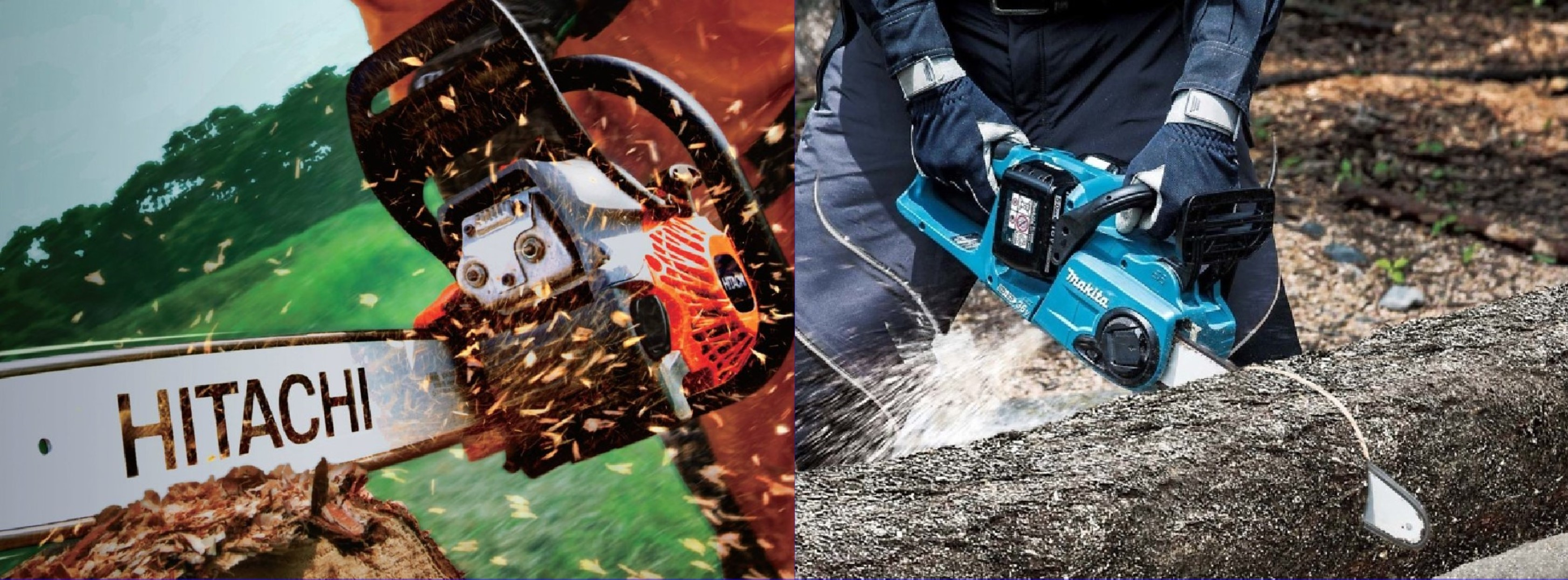 Electric and Petrol Chain Saw